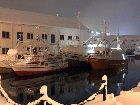 Det er store mengder snø som har lagt seg på Magerøya de siste dagene. Nordkappregionen Havn ber folk følge med både snømengde og fortøyninger.