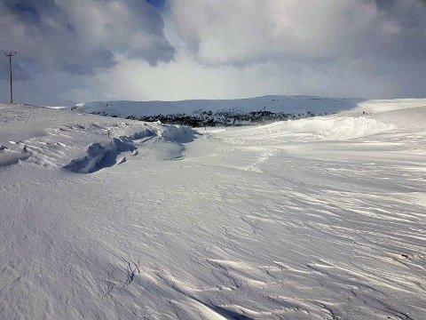Dette er veien ned til Repvåg. Ser du vei-stikkene som indikerer hvor veien går?