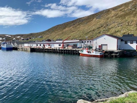 Skarsvåg fiskeriservice as .