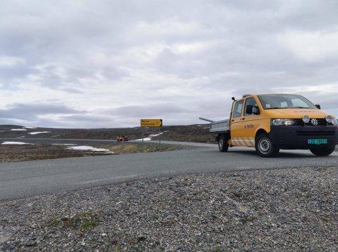 SKILT PÅ PLASS: Nå har Nervei fått sitt eget veiskilt. Fra Reinoksevann kan vi se at det er 17 kilometer ned til sjøsamebygda i Gamvik kommune.