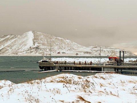 SOM SVALBARD: I havna i Tufjord flyter det isklumper og isflak. - Det er nesten som på Svalbard og veldig uvanlig her hos oss, sier Siss Heidi Hansen