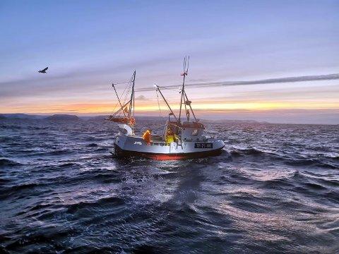 Havella- en av de nyeste tilskuddene i fiskeriflåten i Nordkapp.