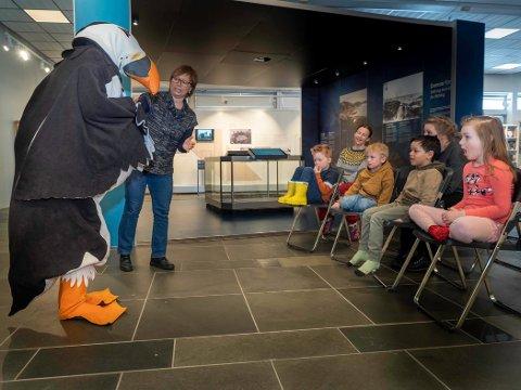 KRÆSJLANDET: Lundefuglen «Lunde» fortalte gjennom Heidi Holmgren, om den dramatisk historien som førte til at hun havnet på Nordkappmuseet.