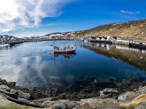 FISKELYKKE: Fiskebruket i Skarsvåg er et av anleggene i Nordkapp som har tatt imot mye fisk de siste ukene.