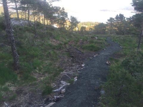 NY STI: Her over dei blaute myrene på veg opp nordryggen på Brandsøyåsen kan ein no gå tørrskodd. Bak ser vi Solheimsfjorden med austre enden av Ålvora.