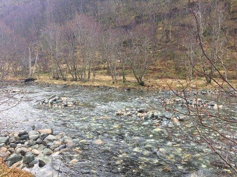 Bortneelva- tiltak for å betre tilgang for fisk. Grupper av «kålhodestein» er plassert ut i elva.