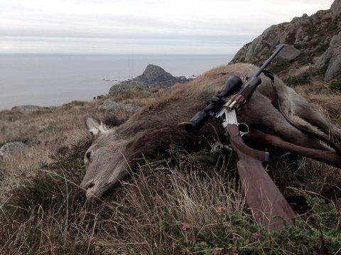 Resultata frå hjortejakta i Flora og Bremanger i 2017 er no klare, og det er auka avskyting i begge kommunar. Her frå hjortejakt på Skorpa.