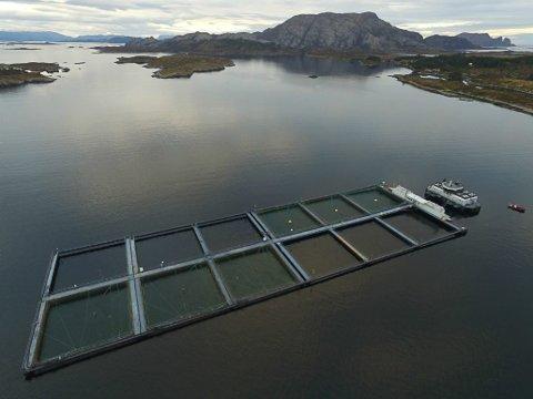 E.Karstensen Fiskeoppdrett, mot Kinn.