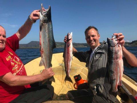 FIN FANGST: Arvid Tansø og Terje Svardahl med noko av fangsten etter to dagar ved kilenota på laksevarpet.