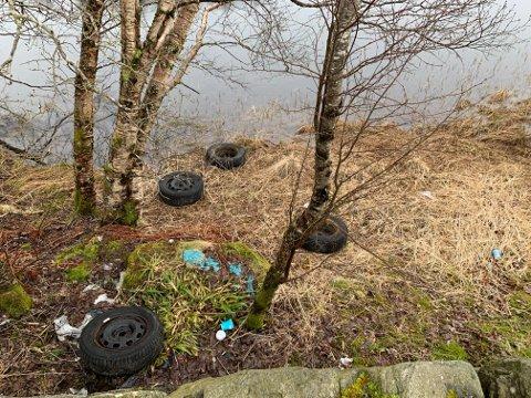BOSS: Bildekk ligg og sleng ved Myklevatnet på Almenningsfjeller
