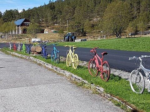 Her er ti av syklane som Heidi Vallestad har pynta opp med med tanke på Tour des Fjords.