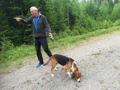 HER KOM BJØRNEN: Asbjørn Etterlid frå Førde bur på Rena. Han viser kor binna angreip medan hunden Eero framleis kjenner lukta av bjørnen.