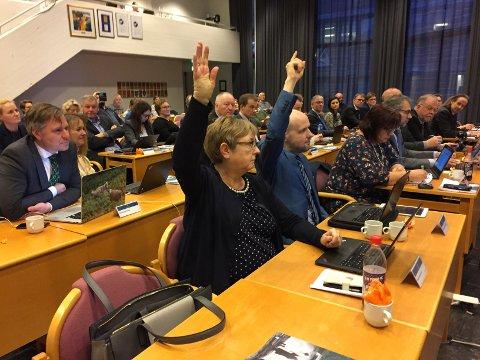 STEMTE MOT: Her vedtek fylkestinget å gje SFE-aksjar til kommunane. Marita Aarvik og Frank Willy Djuvik frå Frp stemte imot.