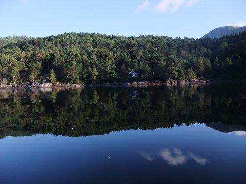 NEKTA: Statsforvaltaren stiller seg imot kommunen sitt vedtak om å tillate påbygg og veg til denne hytta i Skarvika i Naustdal.