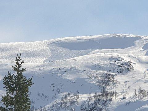 SKRED: Måndag føremiddag var det gått eit skred på Sandfjellet i Naustdal.