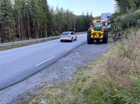 Kantslått. Her frå kantslått ved E39 i Slåttebakkane i Førde.