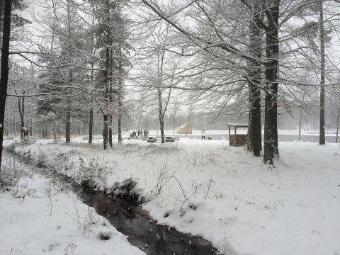 Vinter ved 2. dam: Landskapet har forandret seg betraktelig det siste døgnet, og her ved 2. dam i Fredrikstadmarka har folk samlet seg til lek.