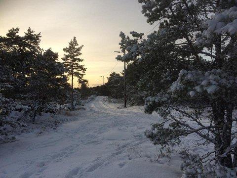 Endelig: «Noen fantastiske mennesker har skrapt sammen snøen og lagd løyper til oss», skriver fotografen.