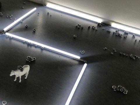 Kongevold benytter seg blant annet av hundrevis av små metallkuler i forskjellige størrelser på en av utstillingens installasjoner. Midt i installasjonen står en miniatyrfigur av en ku.