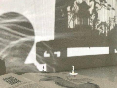 Utstillingen har også en installasjon hvor bruken av skyggespill står sentralt. Kongevold har blant annet hentet inspirasjon til utstillingen fra gen-læren, noe som er et gjengående tema i flere av installasjonene.