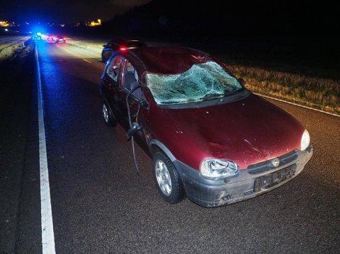HARD SMELL: Bilen har fått seg en kraftig smell etter å ha truffet elgen som måtte bli avlivet.