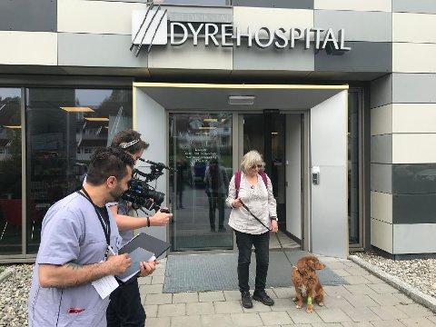 Regissør Cash Khazai (t.v), fotograf Joakim Thoresen og Jorunn Thorsen med sin hund Mira (10 år, Nova Scotia Duck Tolling Retriever), under innspillingen av en scene utenfor Fredrikstad Dyrehospital torsdag.