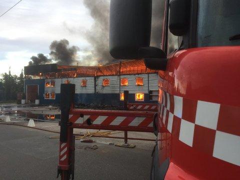 FULL FYR: Brann på Solgård skog i Moss