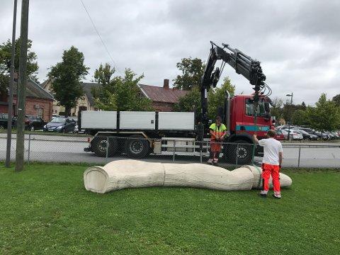 En kranbil fra kommunen flyttet tirsdag slangebenken fra Dampskipsbrygga til Cicignon skole.