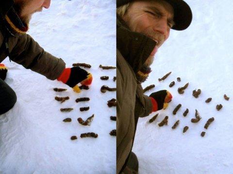 Kreativ: Fredrikstad-mannen Hans Gerhard Meier fikk ideen om å bruke bæsjen til hunden Hugo på en ny måte...