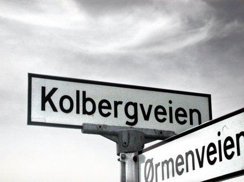 – FORFERDELIG: Teknisk utvalg-leder Hans Ek (Sp) mener at standarden på Kolbergveien ved Onsøy kirke er helt forferdelig. Nå har politikerne prioritert denne og Enhusveien på topp når de skal bevilge fem ekstramillioner til veivedlikehold.