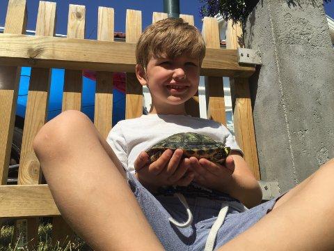 Nathaniel (5) passer godt på den lille skilpadda.