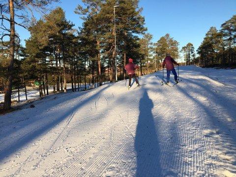 Grei såle: Skøyting er stilen man bør velge i Fredrikstad skiarena, siden det ikke er kjørt spor. Onsdag var det fine forhold og nesten påskestemning med blå himmel over Veum.