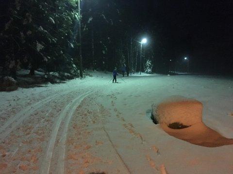 Skiføre: Det er skiløyper fra Veum til Rolvsøyhallen og fra Veum til Renna nord for Bjørndalen. Bildet er tatt i Fredrikstadmarka i januar i fjor.