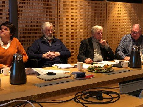 ØNSKER OVERSIKT: Fredrikstad Energi skal for første gang gjennom en eierskapskontroll av kommunen. Eierforholdene har gjort at det ikke har vært aktuelt tidligere. Nå ønsker kontrollutvalget en gjennomgang. Fra venstre Anita Skogseth Bjørneby, Per Lebesby, Henning Aall og John Fredrik Olsen.