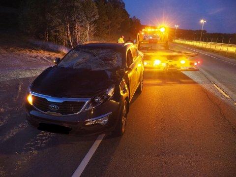 KJØRTE PÅ ELG: Føreren av bilen skal ikke være skadet, men elgen gikk det ikke så bra med.