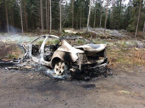 RØYK: Det kom fremdeles svak røyk opp fra denne utbrente bilen som Ole Paulshus fant på eiendommen sin i Våler søndag morgen. Foto: Ole Paulshus