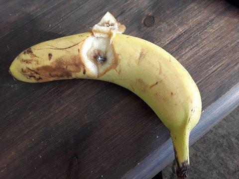 SPIKER: Denne spikeren lå i bananen til Anne-Lise.
