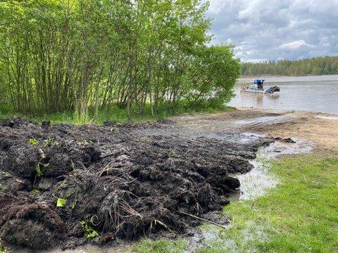 FJERNER SIV OG RØTTER: «Sivklippar`n» heter båten som rensker opp i Amundbukta i Vansjø.   (Foto: Øivind Lågbu)