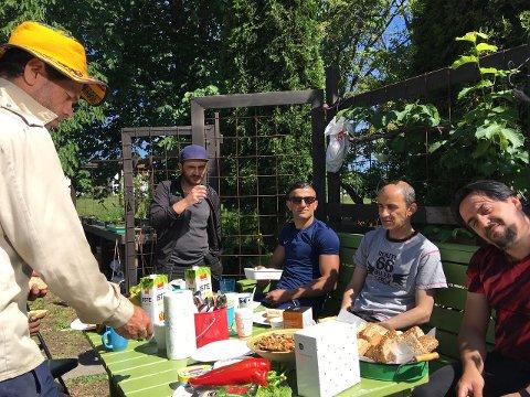 Lunsjpause i Månegartneriet. Arbeids- og språkpraksis i det grønne. Vi graver, planter, høster og ler masse! Norsk Folkehjelp, Frivilligsentralen og Gamlebyen festivaldrift samarbeider om inkludering.