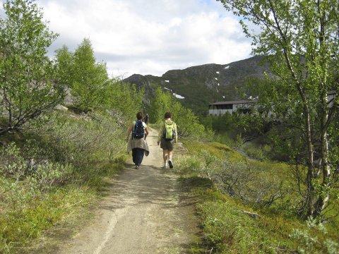 Den lengste ruten går fra Bjørnfjell.