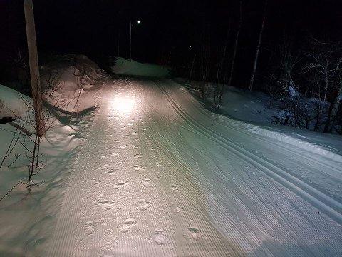 TYDELIGES SPOR: Slik så det ut i skisporet i Bjerkvik lørdag morgen. Foto: Rune Skog