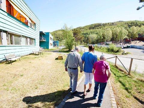 Å være aktivitetsvenn kan være noe så enkelt som å gå en tur sammen med noen. Illustrasjonsfoto: Kristoffer Klem Bergersen