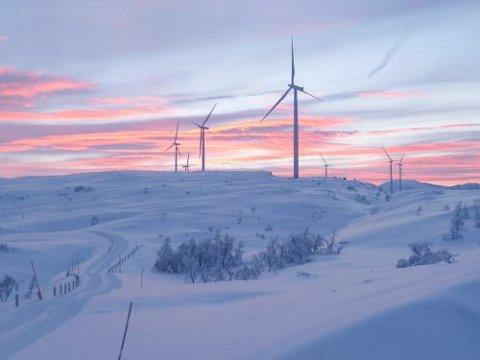 FLERE INNSPILL: Mange har kastet sine øyne på Narvik når det gjelder muligheten for vindparker. Men ikke alle vil fortelle hvem de er.