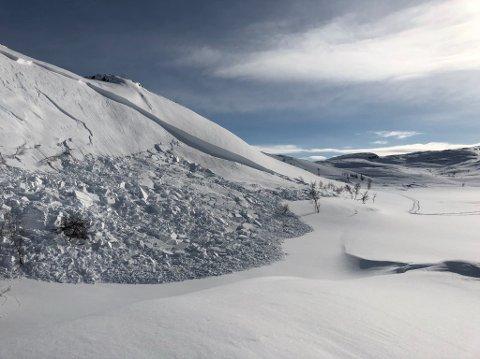 Dette bildet tok Silje Bergh Lorentzen på Nygårdsfjellet mandag.