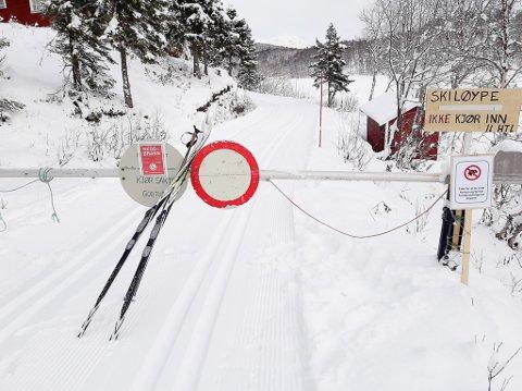 INN PÅ TOPP TI: De dugnadsdrevne skiløypene i Narvik-regionen faller i smak hos Dagens Næringsliv. «Størst av disse er Herjangsfjellet med et løypenett på 65 kilometer», skriver Dagens Næringsliv om Narvik-regionen i sin store skiguide.. Allerede 1. november så det slik ut i løypa ved Skallvatn.