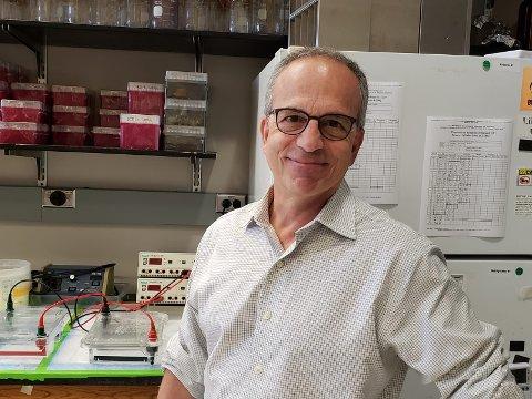 PROFESSOR: John J. LiPuma mener det er viktig å fastslå hvor bakteriene som smittet flere pasienter på øyeklinikken, stammer fra.