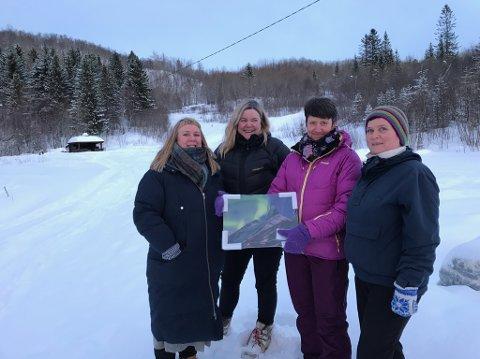 Komiteen: Wanja Henriksen, Alfhild Larssen, Sølvi Arntzen og Laila Adolfsen samlet inn over 50 000 kroner i Kjøpsvik. Bente Kristoffersen var også med i komiteen, men er ikke avbildet.