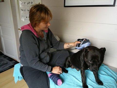 Nytt firma: Maria Kjile NIskasaari skal drive med massasje og rehabilitering av hunder i Evenskjer.