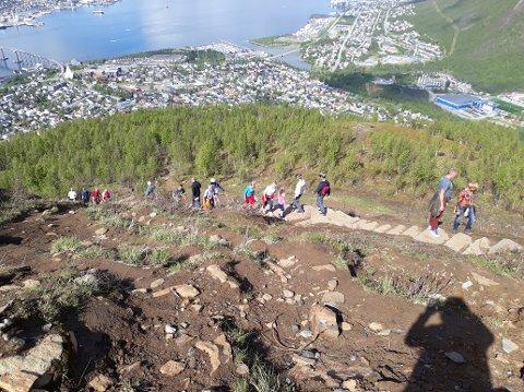 BESØKET FEMDOBLET: Besøkstallene i sherpatrappen i Tromsø er mye høyere enn noen hadde forestilt seg. Det er fem ganger så mange som gikk trappa i 2019 som i 2015. Slitasjeskadene i Masterbakken var store før trappa ble anlagt. Allerede i 2019 ser man tegn på at vegetasjonen er i ferd med å reetablere seg.