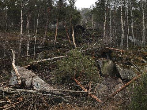 RAS: En stor steinblokk løsnet fra ei fjellside i Skjomen natt til søndag. Den ødela ei høyspentledning, og 280 strømkunder på Elvegård og i Sør-Skjomen er uten strøm på ubestemt tid.